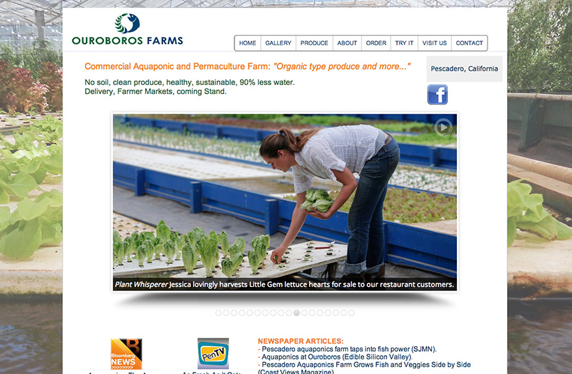 Small business website | aquaponics and organic farm | organic produce